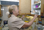 Elderly lady putting household items into kitchen cupboard